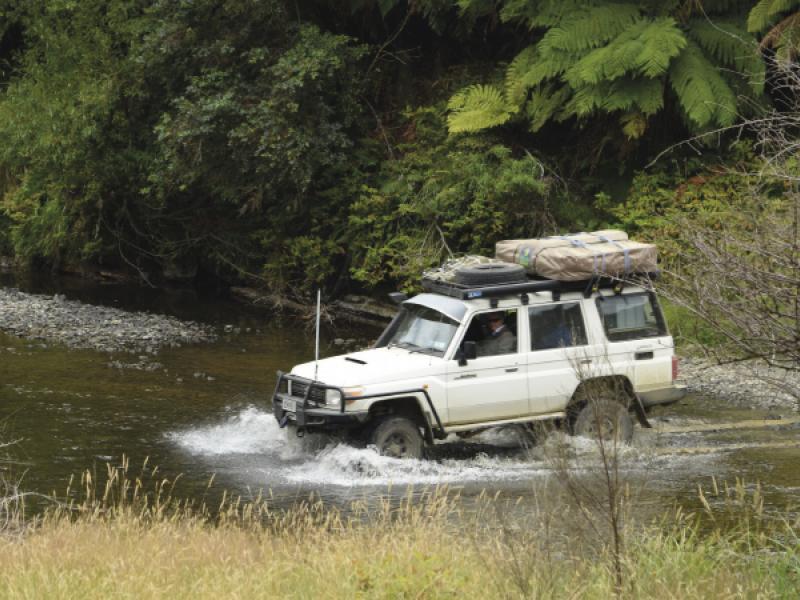 The Motu Safari 2021